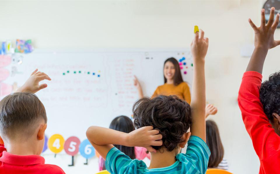Crianças em idade escolar são o principal alvo de piolhos. Descubra como professores e responsáveis devem proceder em caso de pediculose nas escolas.